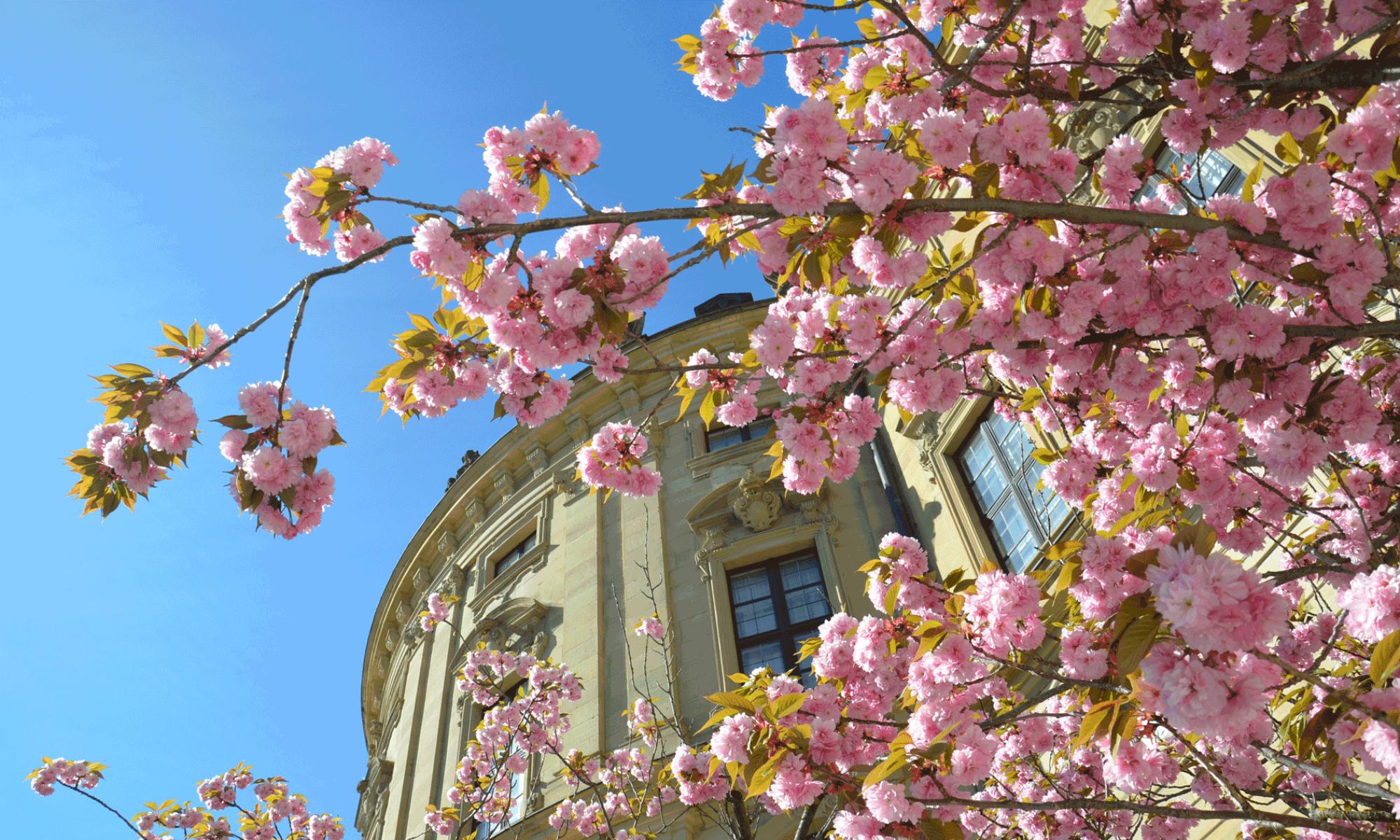 Würzburg-Hofgarten